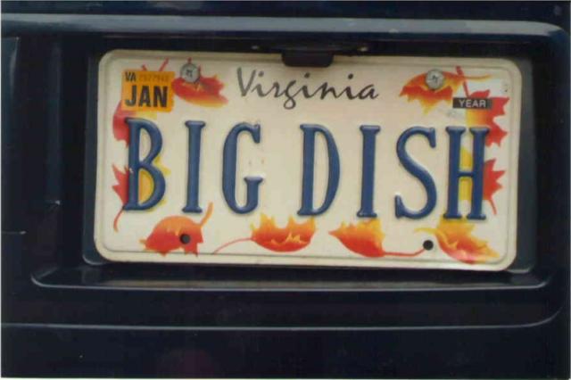 Big Dish License Plate